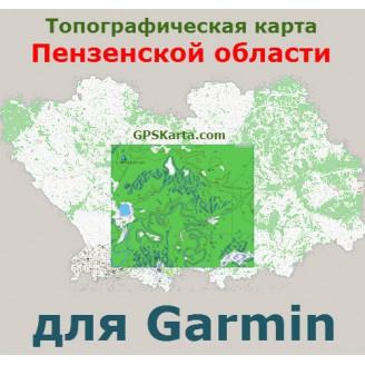 Топографическая карта Пензенской области для Garmin (IMG)