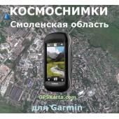 Смоленская область 100 метров - Спутниковая Карта v3.0 для Garmin