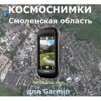 Смоленская область 1:10000 - Спутниковая Карта для Garmin