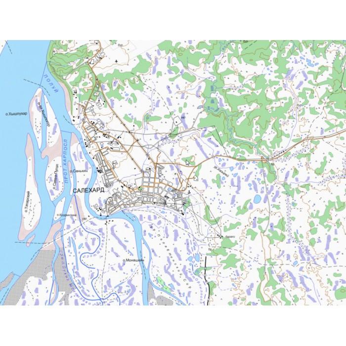 Топографическая карта янао пуровский район