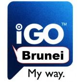 IGO Бруней 2017 Q1