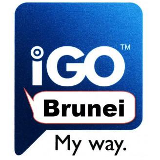 IGO Бруней 2018 Q1