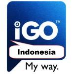 IGO Индонезия 2017 Q4