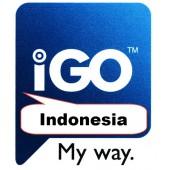 IGO Индонезия 2018 Q1