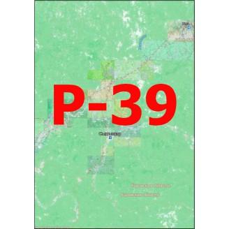 Квадрат Р-39 Масштаб 1:50000 (500-метровки)