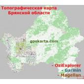 Брянская область Топографическая Карта для Garmin (JNX)