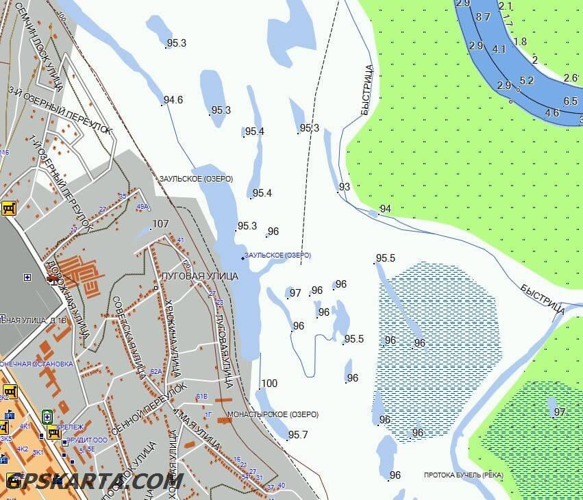 Рязанская область спутниковая карта